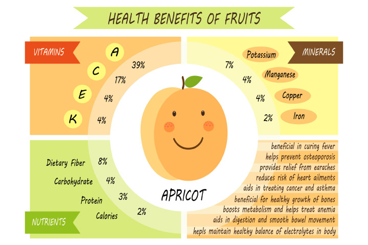 Apricots For Baby - Nutritional Values