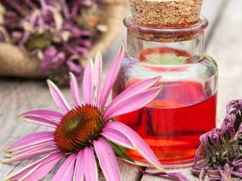 Echinacea When Breastfeeding: Safety, Benefits, And Side Effects