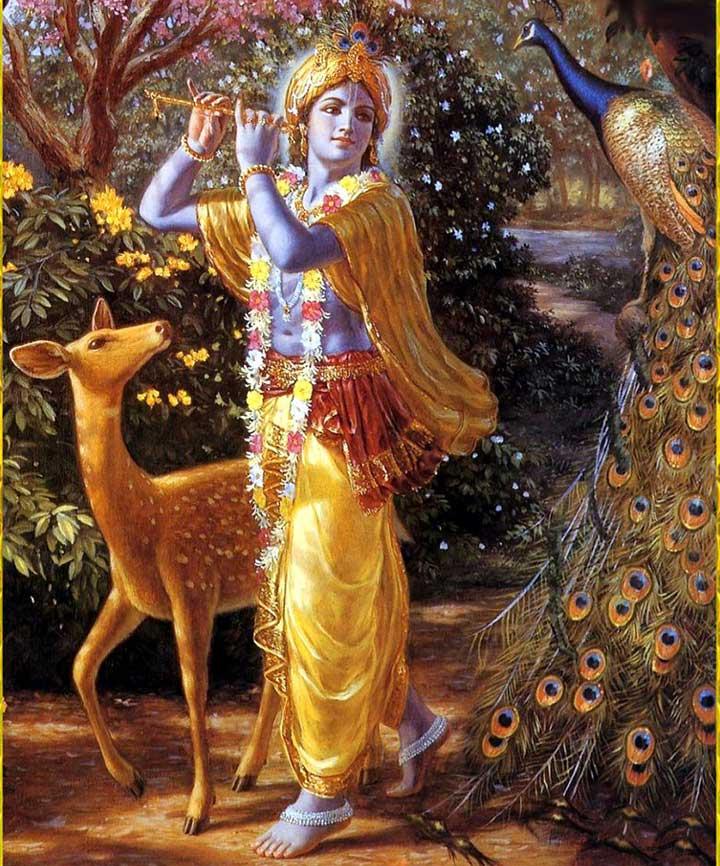 Krishna's coin