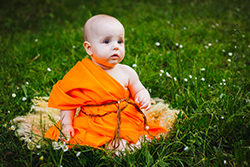 Gautam Buddha Pdf