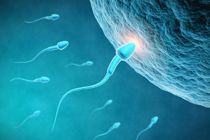 Unbelievable You Can Get Pregnant Without Eggs Or Sperm