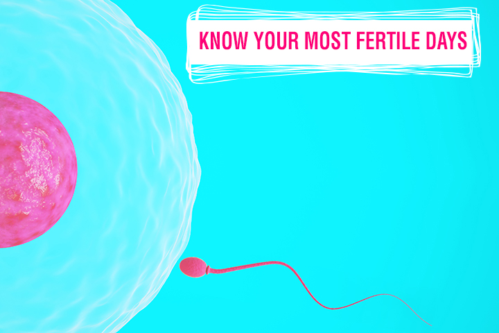 fertile cover