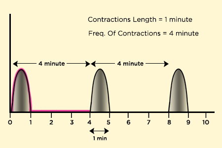 contraction frequency