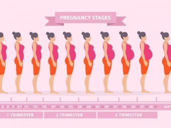 A Handbook To Get Through Your Nine Months Of Pregnancy