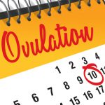 Does Ovulation Make You Sleepy Here's Why You're Feeling So Exhausted