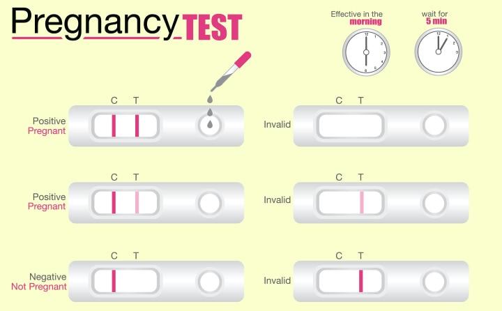 गर्भावस्था जाँच (प्रेगनेंसी टेस्ट) कैसे और कब करना चाहिए | Pregnancy Test In Hindi