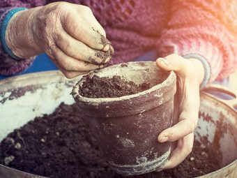 Eating Soil - Effects Of Eating Soil During Pregnancy