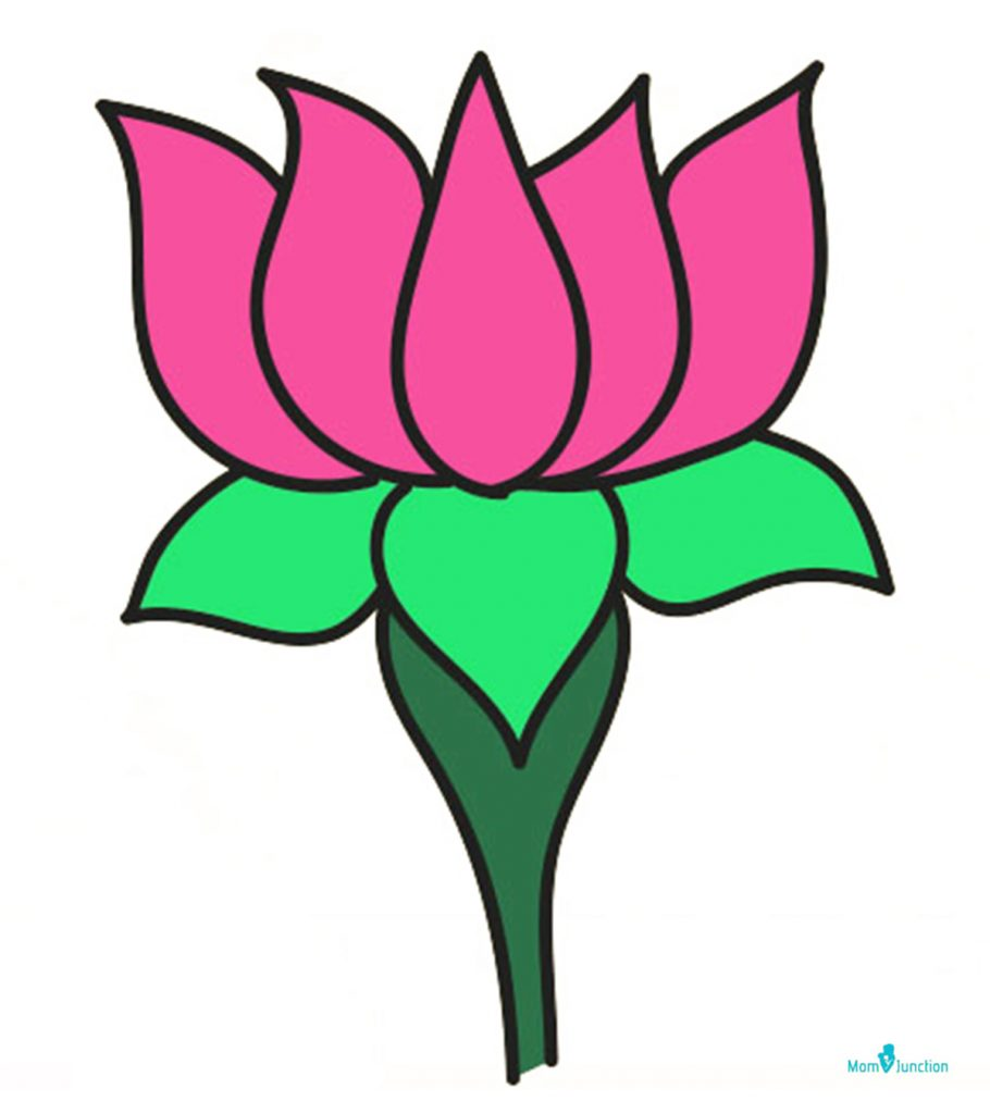 how to draw lotus  easy step