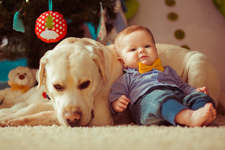 These Pictures Prove That Raising Babies And Dogs Together Is As Cute As You've Dreamed