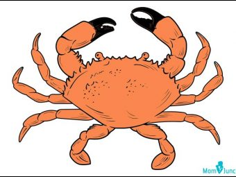 How To Draw A Crab: 10 Easy Steps To Follow