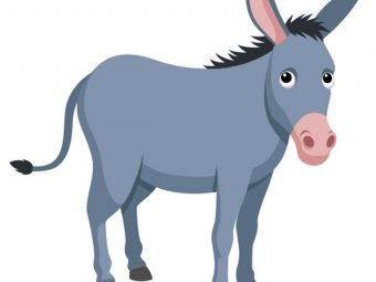 How To Draw A Donkey: A Step-by-Step Process