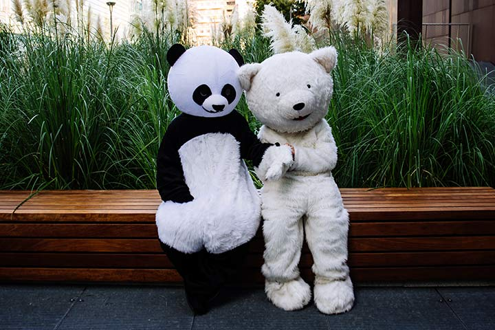 Panda and Teddy Costumes for Couple