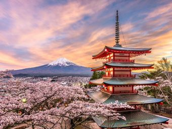 43 Interesting Facts About Japan