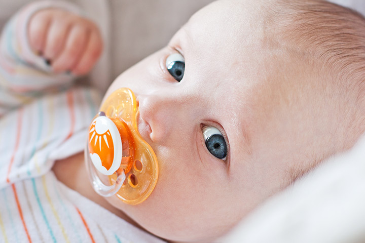 Baby fruit feeder pacifiers