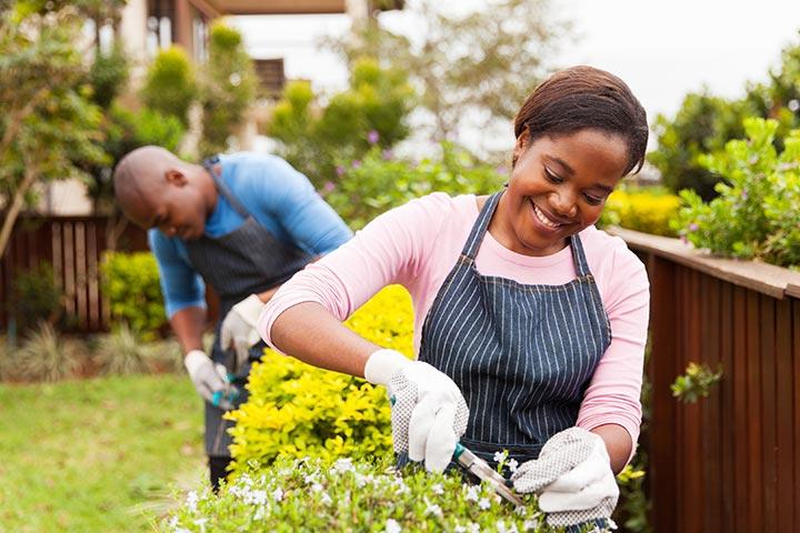 Grow a garden: