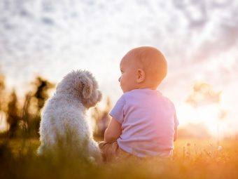6 Advantages For Kids Who Grow Up With Dogs