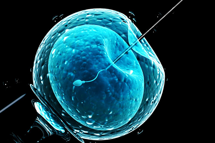 In Vitro Fertilization Procedure, Success Rates And Side Effects
