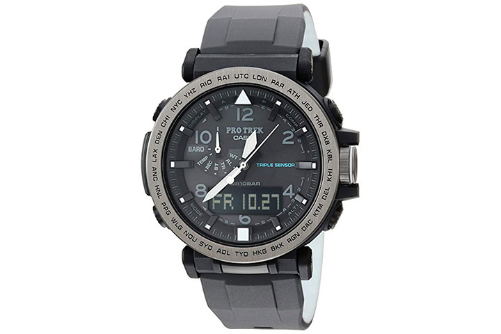 11. Casio pro-tek watch