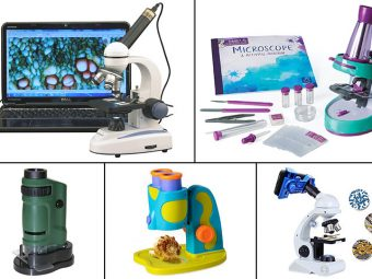 11 Best Microscope To Buy For Kids In 2019