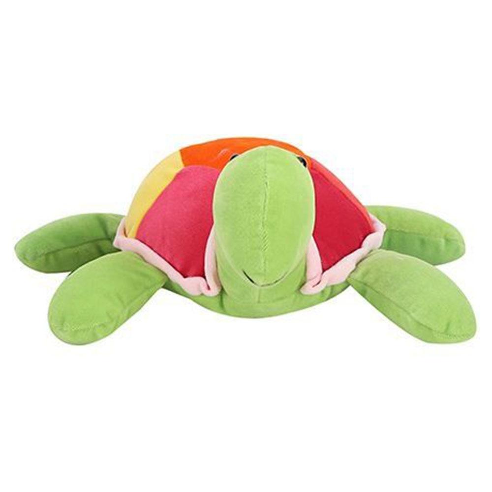 Playtoons Tortoise