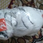 Wild Republic CK White Tiger-Amazing soft toy-By lov_anu