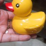 Dr. Toy Duck Bath Toys-Bath toy-By shwetamittal21