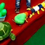 Deals India Colorful Caterpillar And Ball Soft Toy Combo-Vibrant and colourful combo!-By mridula_k
