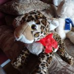 Wild Republic CK Baby Leopard Soft Toy-Soft buddy-By sumi2020