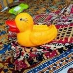 Dr. Toy Duck Bath Toys-Cute little ducks-By kanikabansal