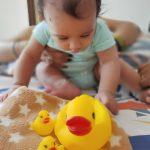 Dr. Toy Duck Bath Toys-DUCK BATH TOY-By swapniln