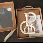 Sophie la girafe teether-Giraffe the teether-By diya_sanesh