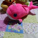 Playtoons Dolphin Soft Toy-Dolphin soft toy-By jayathapa278