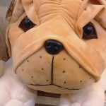 Funzoo Puppy Soft Toy-Puppy soft toy-By dharanirajesh16