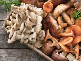 Mushrooms For Babies: Safety, Health Benefits And Recipes