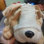 Funzoo Puppy Soft Toy-Cute puppy soft toy-By jayathapa278