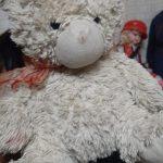 Abracadabra Teddy Bear-Adorable teddy bear-By jayathapa278