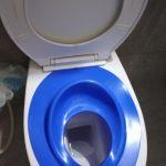 Farlin Baby Toilet Seat-Nice-By sumi