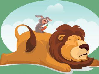 शेर और खरगोश की लड़ाई की कहानी  | Sher Aur Khargosh Ki Kahani