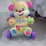 Fisher Price Learn With Puppy Walker-Fisher price learn with puppy walker-By sonisejwal