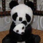 Deals India Mother Panda With Baby Panda-Lovely panda mother-By sameera_pathan