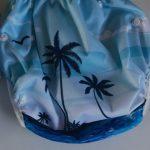 Alva Baby Boys & Girls Swim Diaper-Nice swing diaper-By sameera_pathan
