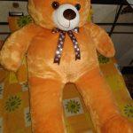 Ultra Angel Teddy Bear-Nice angel teddy-By sameera_pathan