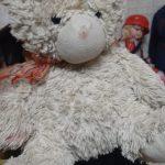 Abracadabra Teddy Bear-Cute teddy-By sameera_pathan