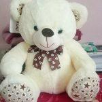 Ultra Cap Teddy Soft Toy-Cute soft teddy-By keerthisiva91