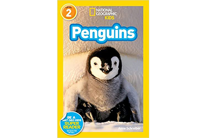 Nat Geo Penguin Edition