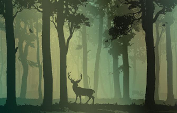 The Story of Ruru Deer in hindi-1