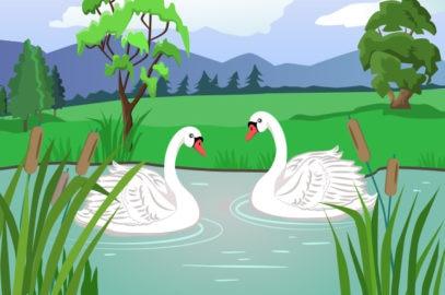 जातक कथा: दो हंसों की कहानी | The Story of Two Swans