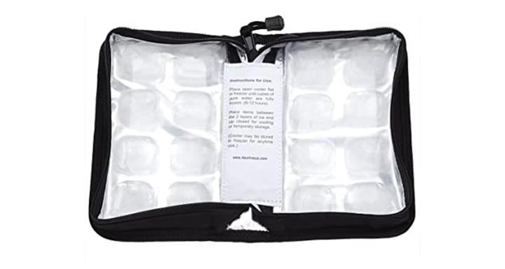FlexiFreeze Pocketbook Breast milk Cooler