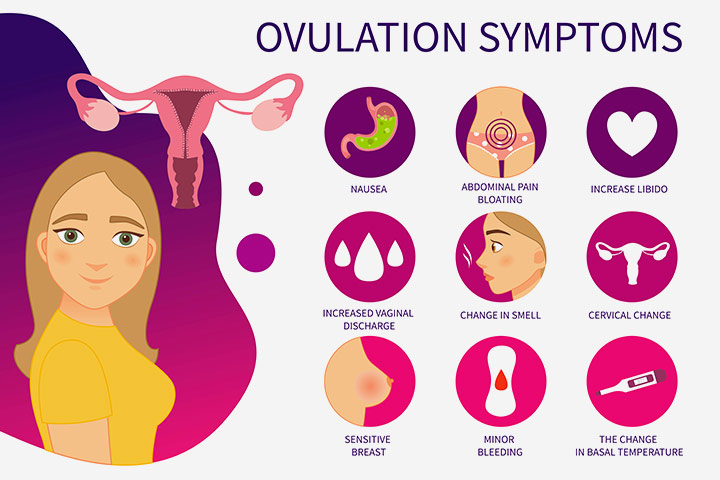 What are the signs of ovulation Tamil