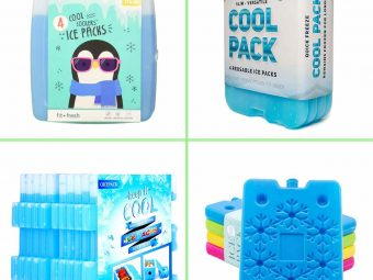 11 Best Ice Packs For Coolers In 2021